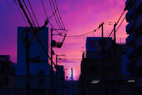 sunset macro japan nikon backalley dusk shikoku micro 日本 60mm nikkor 夏 dslr 散歩 夜市 magichour マクロ ehime lightroom 街 夕焼け 愛媛 四国 松山 路地裏 d610 商店街 ニコン 夕 マジックアワー