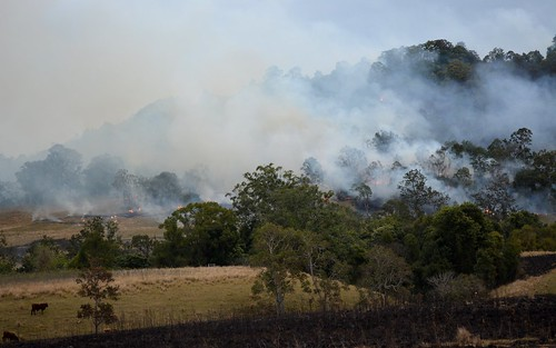 winter landscape fire countryside smoke overcast valley smoky hillside lateafternoon burnoff ruralaustralia rurallandscape afternoonlandscape leycestercreekvalley