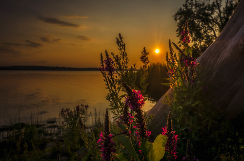 sunset ny nature landscape nikon syracuse onondagalake d5100