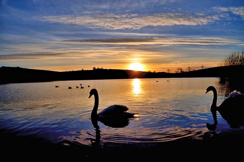 county blue ireland sunset sky lake water clouds over swans northern ulster armagh kernan