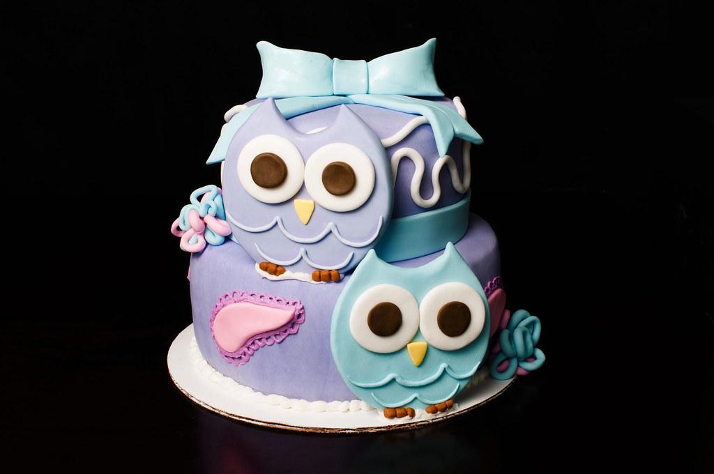 Amazing Cute Owl Themed First Birthday Cake Kayley Mackay Flickr Funny Birthday Cards Online Aeocydamsfinfo