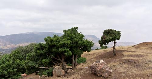 marokko enduro p6033
