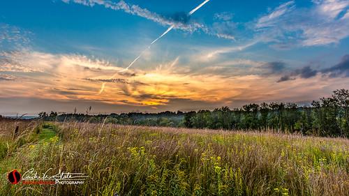 sunset green nature composite wisconsin night clouds forest landscape evening twilight unitedstates waukesha wi hdr prarie digitalblending retzernaturecenter discoverwisconsin travelwisconsin