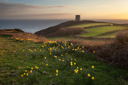 guernsey tower prevote nazi daffodils spring fields sunset coast