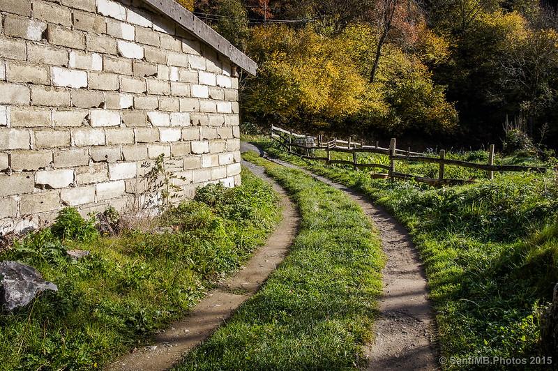 El camino que lleva al huerto