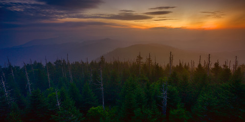 morning travel trees sky sun mountains tower nature weather fog skyline clouds forest sunrise fur landscape nationalpark haze woods scenery escape view natural cloudy nps horizon peak lookout land hdr highdynamicrange ridges clingmansdome greatsmokymountains clingmans