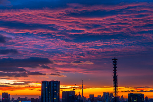 sky japan sunrise dawn tokyo cloudy 東京 空 skytree camera:make=canon exif:make=canon nakajimalassie exif:lens=2470mm exif:aperture=ƒ90 exif:model=canoneos5dmarkiii camera:model=canoneos5dmarkiii exif:isospeed=100 exif:focallength=64mm