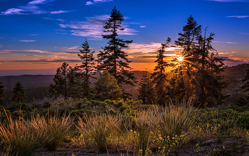 california ca trees sunset mountains valley sierras sierranevada