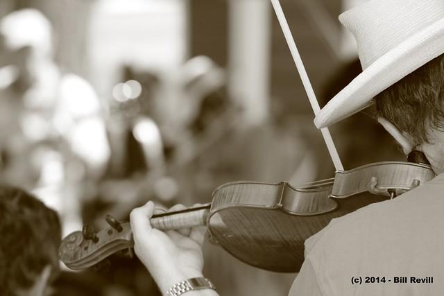 Old Songs Festival fiddler