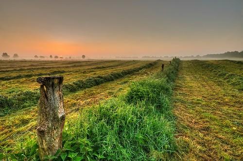 mist sunrise germany landscape deutschland nebel pentax matthias landschaft sonnenaufgang elbmarsch k5 niedersachsen lowersaxony körner sigma1020 rawhdr winsenluhe mattkoerner1 mk|photography