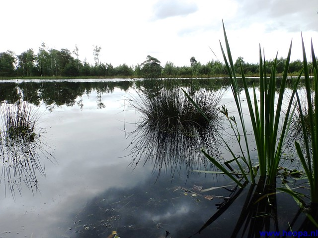 14-06-2014  Veenendaal        40 Km  (82)