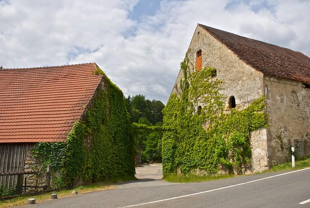 Hiking - See/Oberpfalz