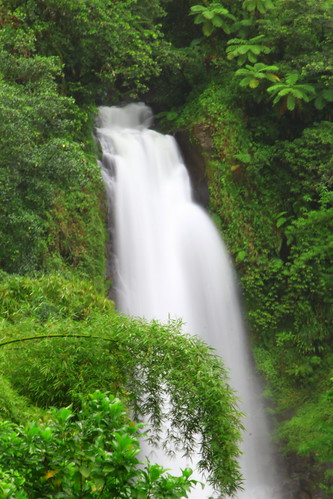 park west green water rain trois forest twins mother trafalgar twin falls national caribbean indies dominica roseau morne pitons fallls