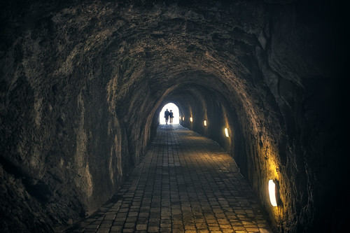 tunnel of love | by Steve Slater (used to be Wildlife Encounters)