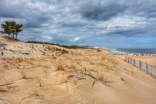 Sand dunes, Cape Henlopen State Park, Delaware | by Michele Dorsey Walfred
