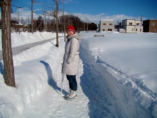 Sapporo Historical Village & Museum