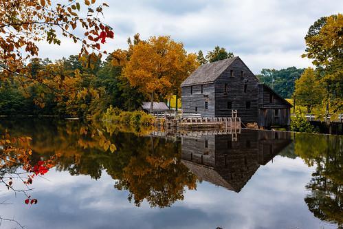 Yates Mill Pond, Raleigh, NC