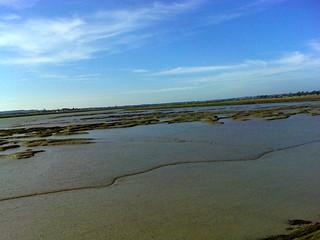 Mudflats SWC Walk 162 North Fambridge to Burnham-on-Crouch Taken by Pia R