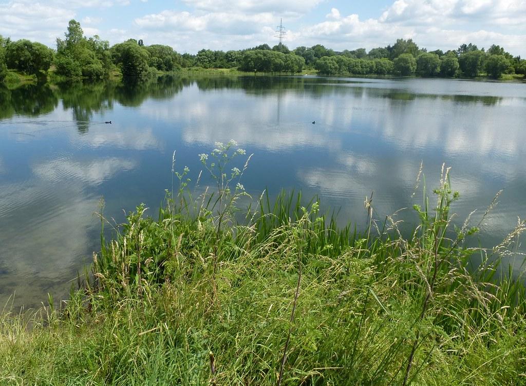 Silbersee (54) | Silbersee | Onani aus Giessen | Flickr