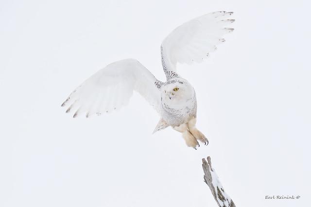 Take off..