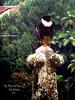 Falcão-de-peito-vermelho by Mônica de França