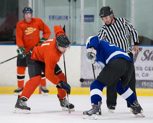 mcfetridge ice rink chicago