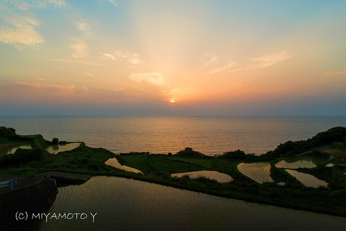 sunset japan island kyushu riceterrace nagasakipref