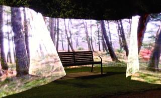 blinkenstick light painting - Cherry Hinton Hall Park / Cherry Hinton Brook