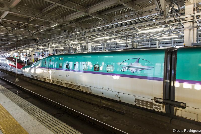 Shinkansen de la serie H5 unido a otro de la serie E6
