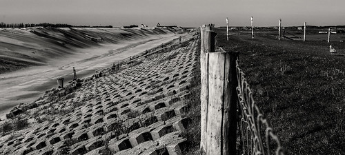 The Last Fence