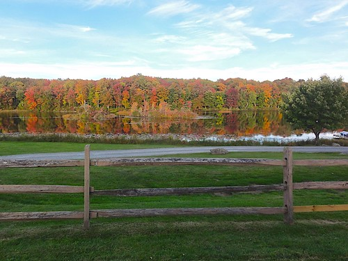 autumn fall colors leaves pond view foliage catskills