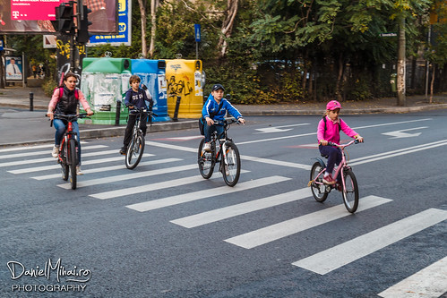 Crossing the road (WWPW 2014) by Daniel Mihai