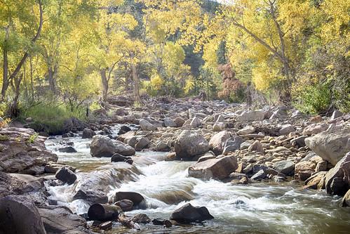 autumn trees fall nature water beautiful creek river landscapes colorado colorful scenic fallfoliage views bouldercounty lefthandcreek