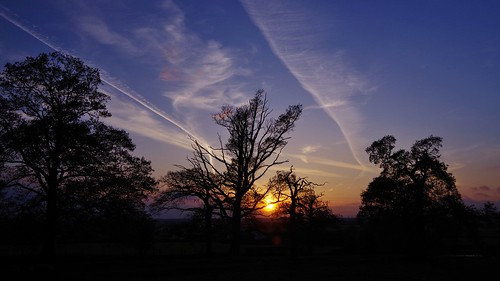 sunset sky trees silhouette pentaxart pentax art clouds light colour red shropshire