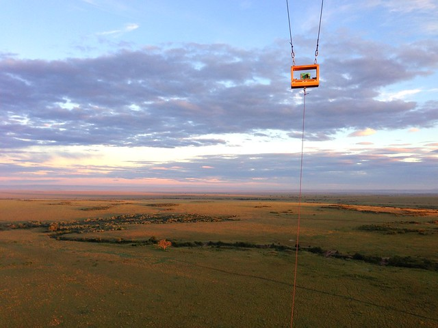 Sunrise over Masai Mara, Kenya.
