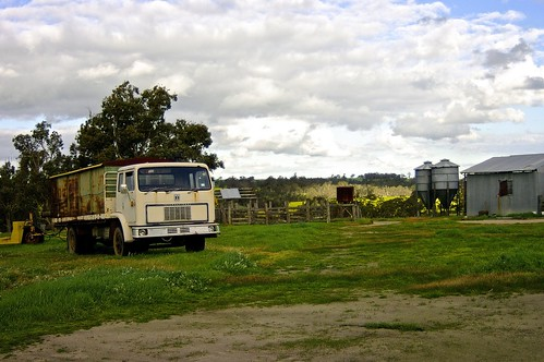 life green texture nature grass metal truck vintage farm grunge shed canola paddock farmlife