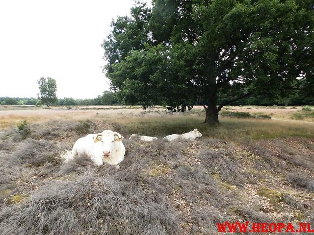 2015-06-27 F.K.C. 't Gooi Wandeltocht 36.4 km (53)