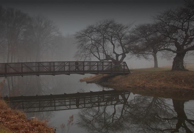 Morning Crossing