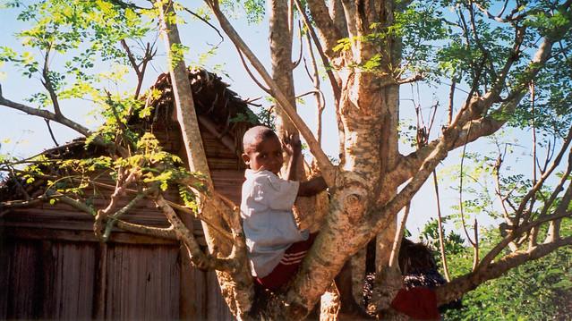Madagascar2002 - 40