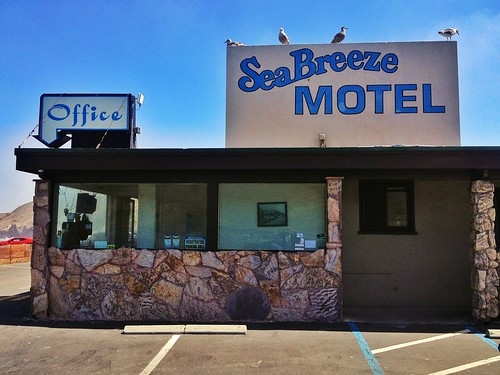 sea ocean seaside pacific motel office seabreeze tourist seagull lifestyle parking scenic view breeze sign foundart lettering explore outdoor rest relax