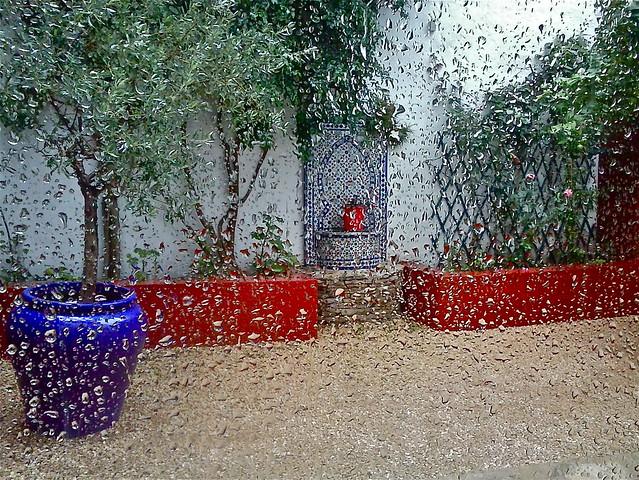 El patio de mi casa cuando llueve.