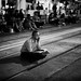 Contemplation, On Track... by van*yuen