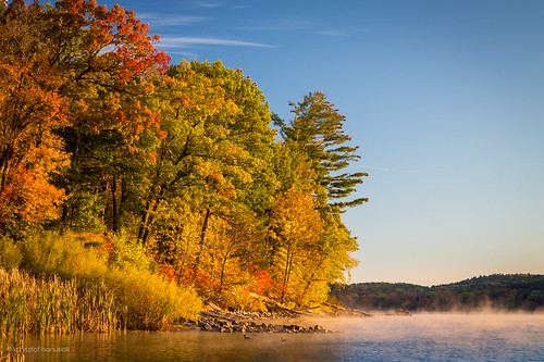 morning autumn trees lake fall colors fog wisconsin sunrise season landscape colorful seasons unitedstates foggy marsh wi devilslake baraboo marshes hanusiak