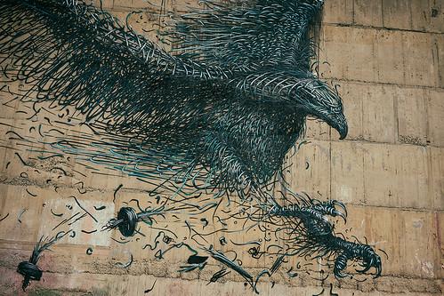street newzealand streetart bird art wall dunedin daleast
