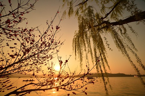 china hangzhou west lake sunset sonnenuntergang boat spring japanaese cherry blossoms willow japanische kirsche boot frühling 中国 杭州 西湖 西湖风景区 ©allrightsreserved