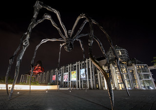 Arachnophobes Need Not Apply : July 12, 2015 | by jpeltzer
