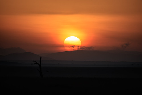 canoneos1dxmarkii canonef500mmf4lisii safari sunrise kenya masaimara