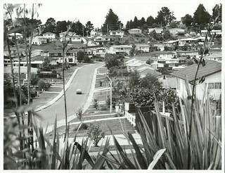 Suburban, Auckland: Castleford Street in the Green Bay-Titirangi area