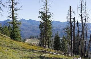 Trinity Ridge