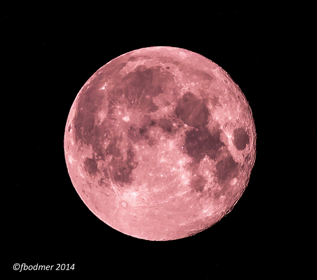 Not a Blood Moon 09-Oct-14 and Sleeping Lions | For this ima… | Flickr
